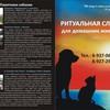Ритуальная служба для домашних животных