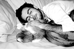 Мужчины, у которых есть кошки, живут дольше