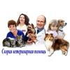 Экстренная ветеринарная помощь